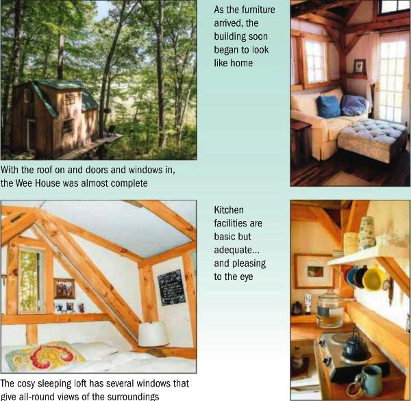 Inside A Tree House, kitchen, couch photos